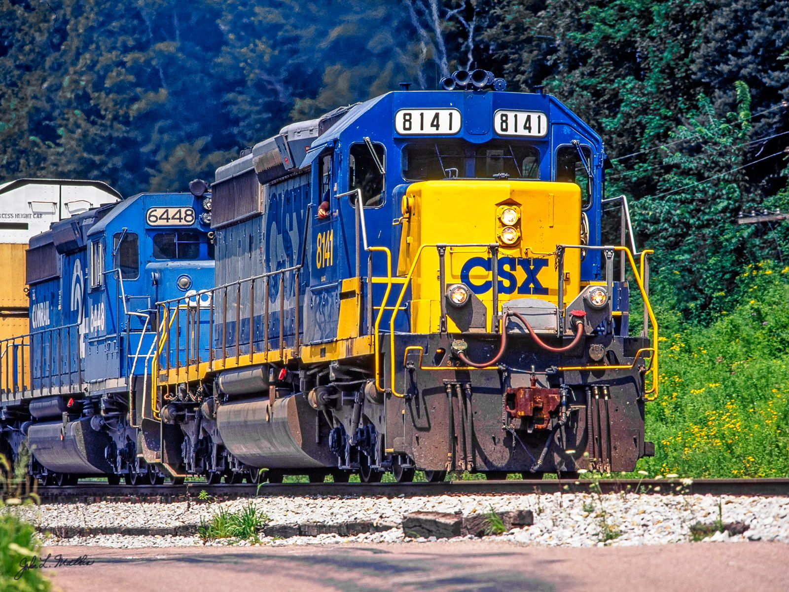 CSX SD40-2 8141 westbound toward Confluence, OH in July 1998.